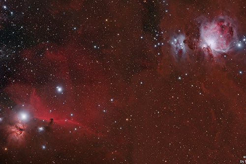 Horsehead and Orion nebula widefield