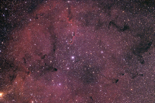 IC1396 Elephant trunk nebula