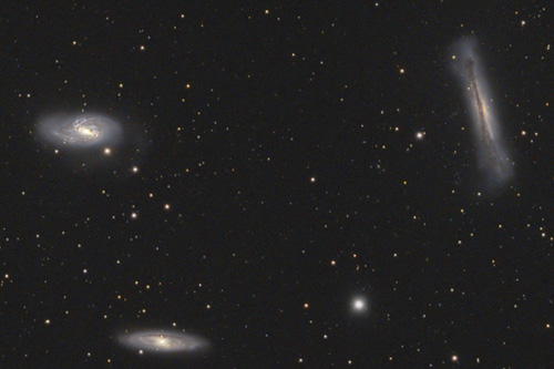 The Leo Triplet (M66 group)