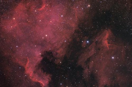 North America (NGC7000) and Pelican nebula (NGC5070)